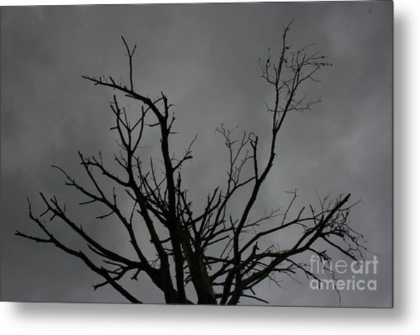 Metal Print featuring the photograph Menacing Clouds Overshadowing by Cynthia Marcopulos
