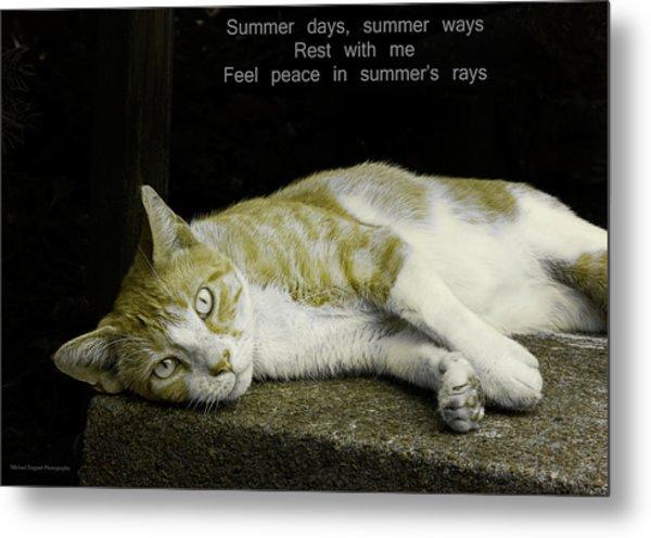 Summer Days Metal Print by Michael Taggart II
