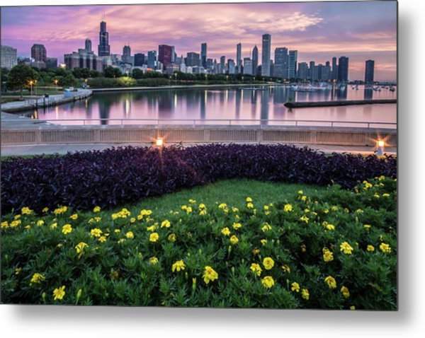 summer flowers and Chicago skyline Metal Print