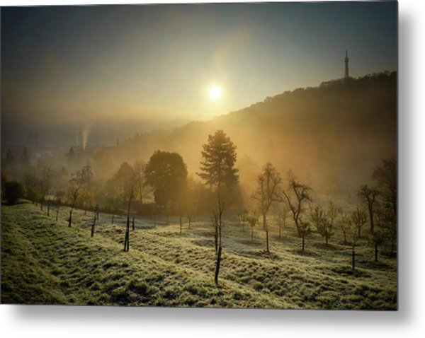 Sunrise From Petrin Yard In Prague, Czech Republic Metal Print