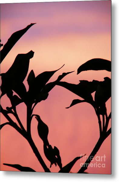 Sunset Silhouette Metal Print by Rose  Hill