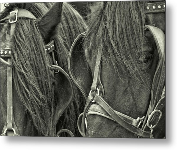 Teamwork Together Metal Print by JAMART Photography