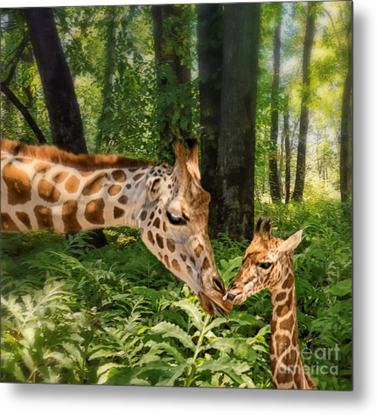 Tender Are The Moments Where Love Embraces Time Metal Print