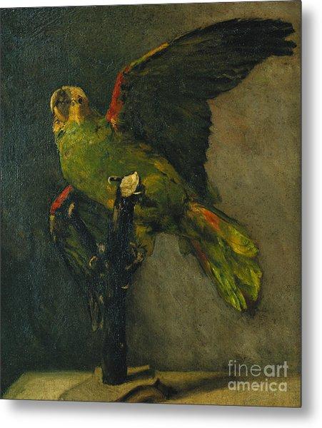 The Green Parrot Metal Print