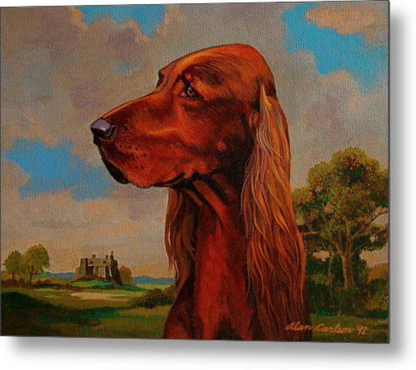 The Irish Setter Metal Print by Alan Carlson