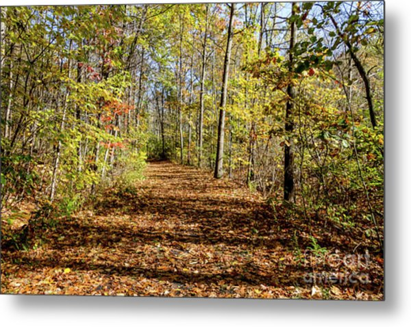The Outlet Trail Metal Print