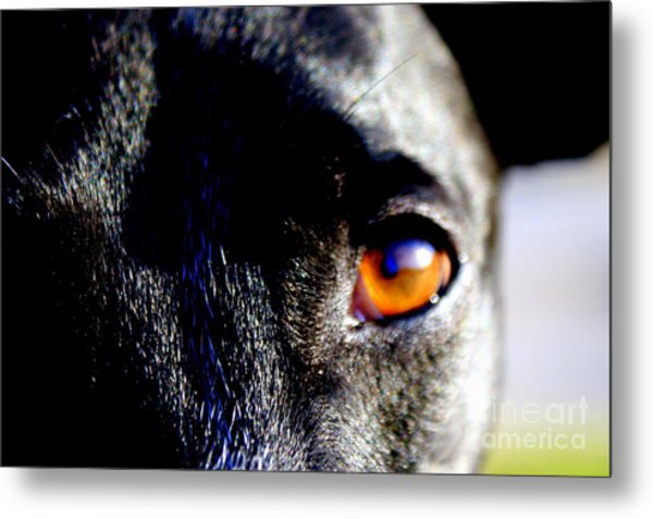 The Saint Metal Print