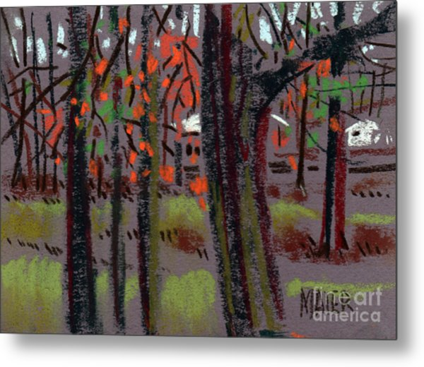 Thru The Trees Metal Print by Donald Maier