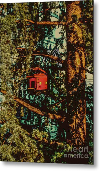 Train Bird House Metal Print