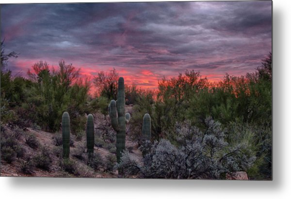 Tucson Sunset Metal Print