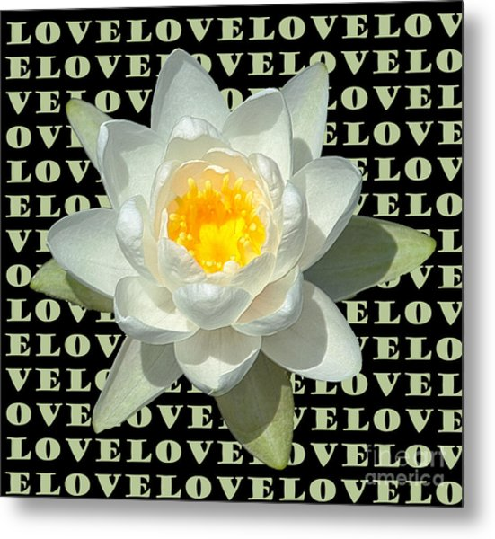 Water Lily Love Metal Print