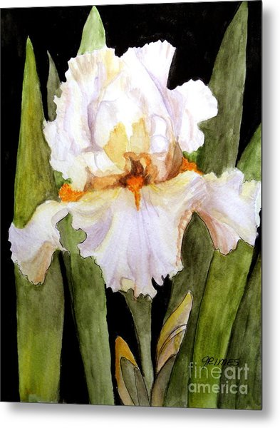 White Iris In The Garden Metal Print