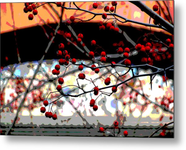 Window Series Metal Print by Ginger Geftakys
