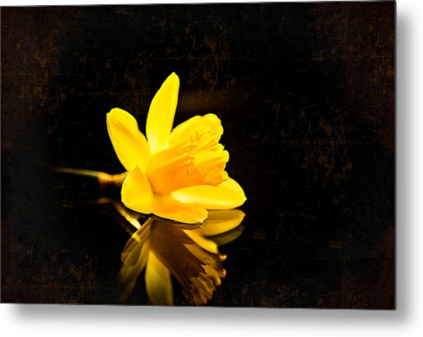 Yellow Dreams Metal Print