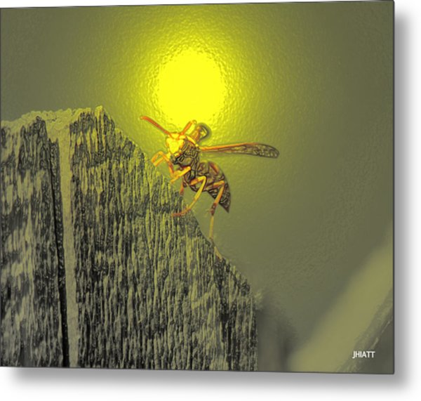 Yellow Jacket Blues Metal Print