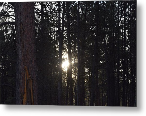 Sunrise Back Country Co Metal Print