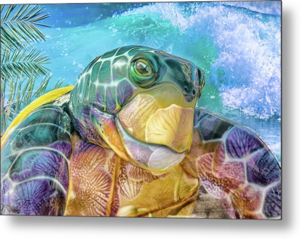 10730 Mr Tortoise Metal Print