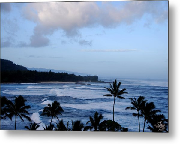 Hawaii Metal Print by Thea Wolff
