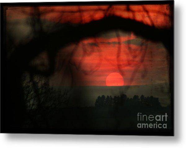 The Sunset Metal Print by Angel Ciesniarska