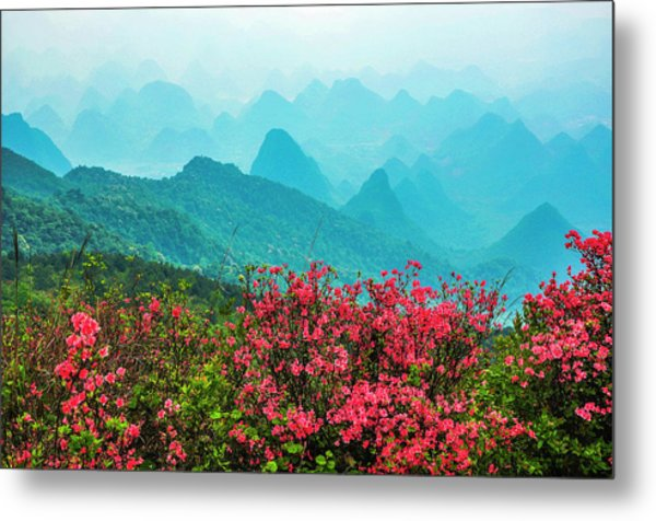 Blossoming Azalea And Mountain Scenery Metal Print