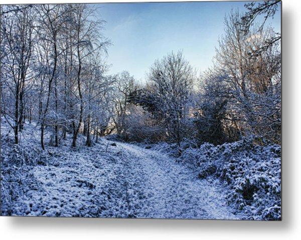 Snowy Cabin Wood Metal Print