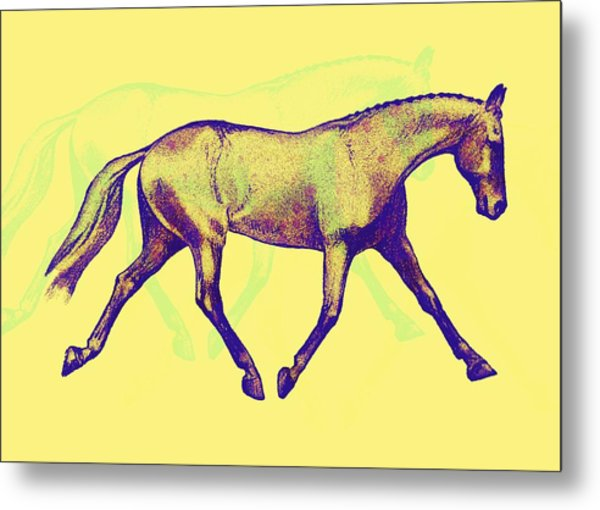 Lengthen Trot Deco Art Metal Print by JAMART Photography