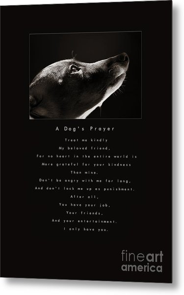 A Dog's Prayer  A Popular Inspirational Portrait And Poem Featuring An Italian Greyhound Rescue Metal Print