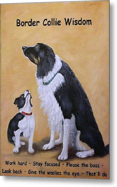 Border Collie Wisdom Metal Print