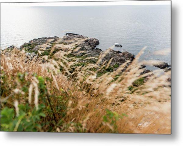 Cliffs At Kullaberg Metal Print