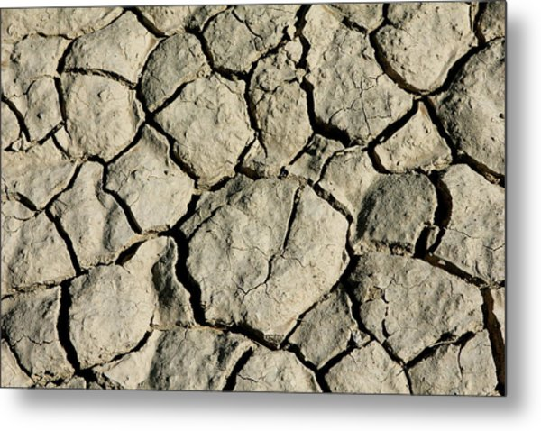 Metal Print featuring the photograph Cracking by Brandy Little