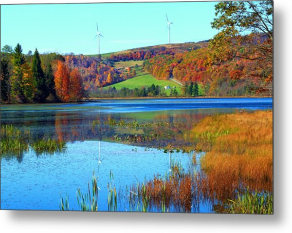 Cranberry Glade Lake Metal Print by Tammy  McGogney