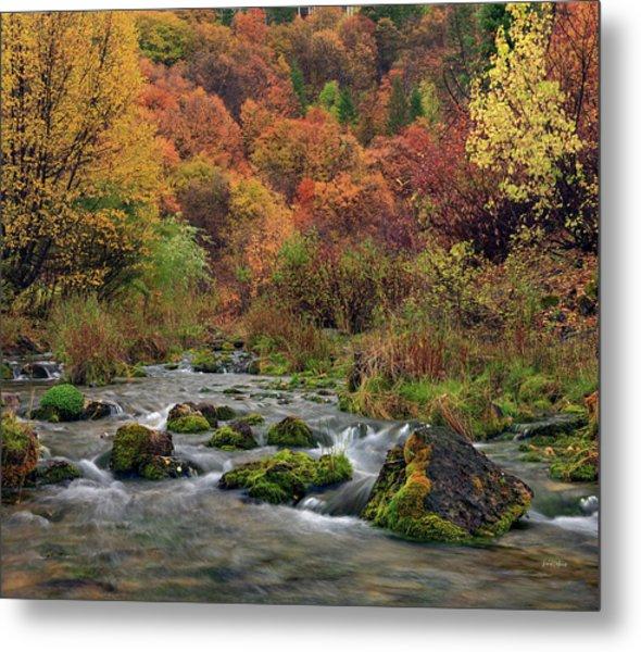 Cub River Autumn Metal Print