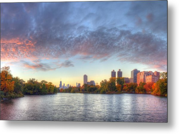 Downtown Chicago From Lincoln Park Metal Print