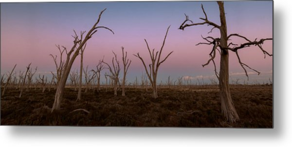 Dusk At Dumbleyung Lake Metal Print