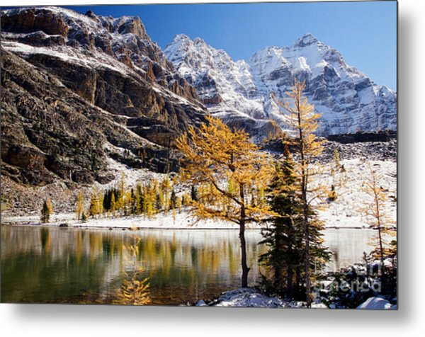 September Dusting Metal Print by Frank Townsley