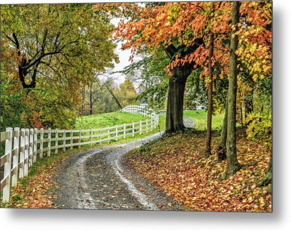Metal Print featuring the photograph Fence Line by David Waldrop