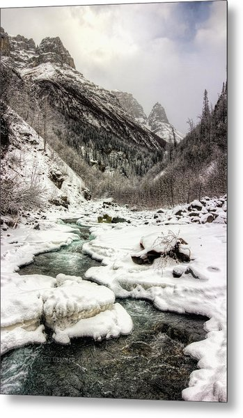 Freeze-up At Dan Creek Metal Print