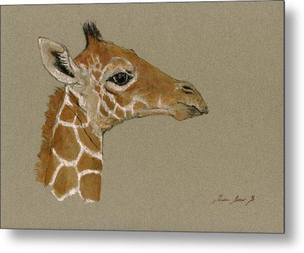 Giraffe Head Study  Metal Print