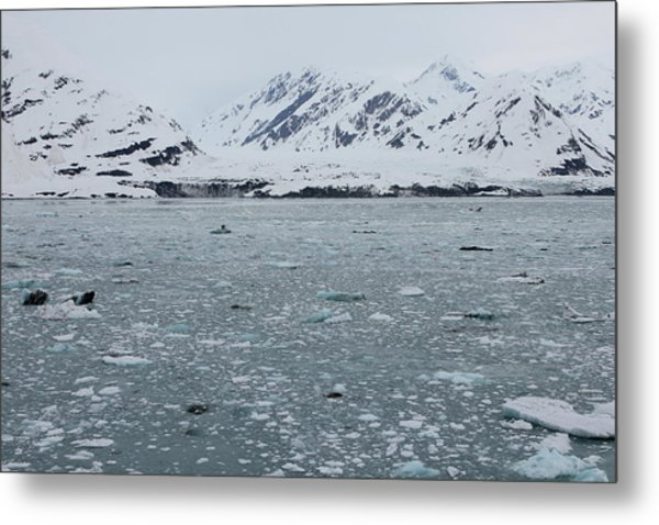 Metal Print featuring the photograph Icy Wonderland by Brandy Little