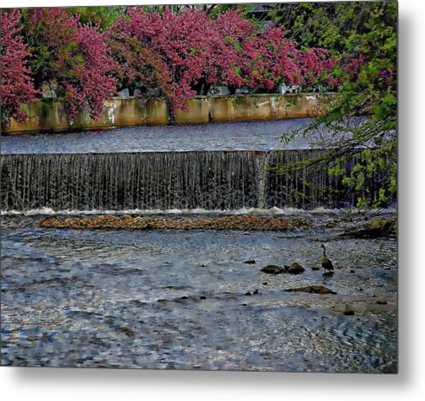 Mill River Park Metal Print