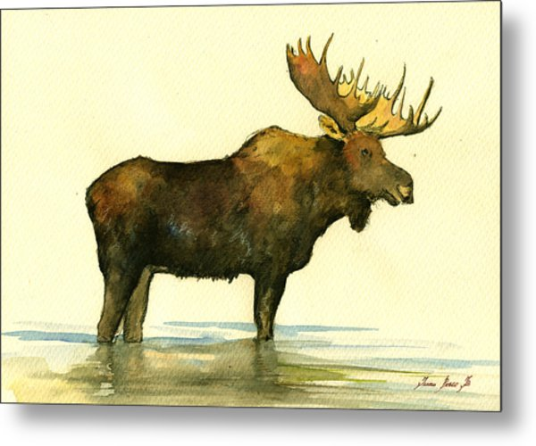 Moose Watercolor Painting. Metal Print