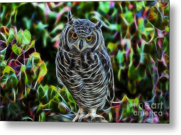 Owl Collection Metal Print