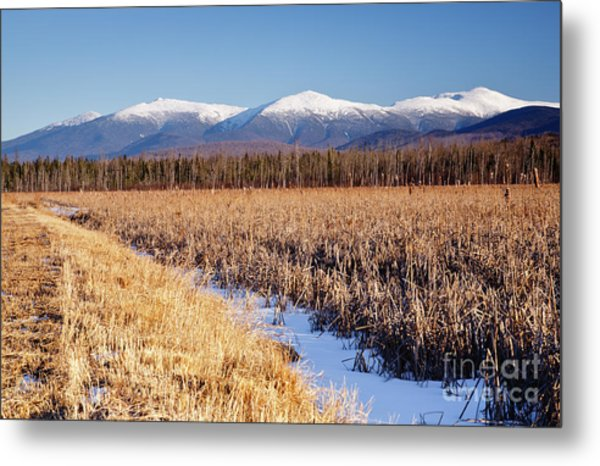 Pondicherry Wildlife Refuge - Jefferson New Hampshire Metal Print
