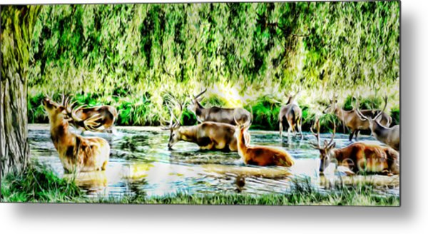 Princes Of The Forest Metal Print by Jason Christopher