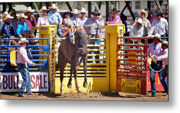 Red Bluff Round-up Metal Print