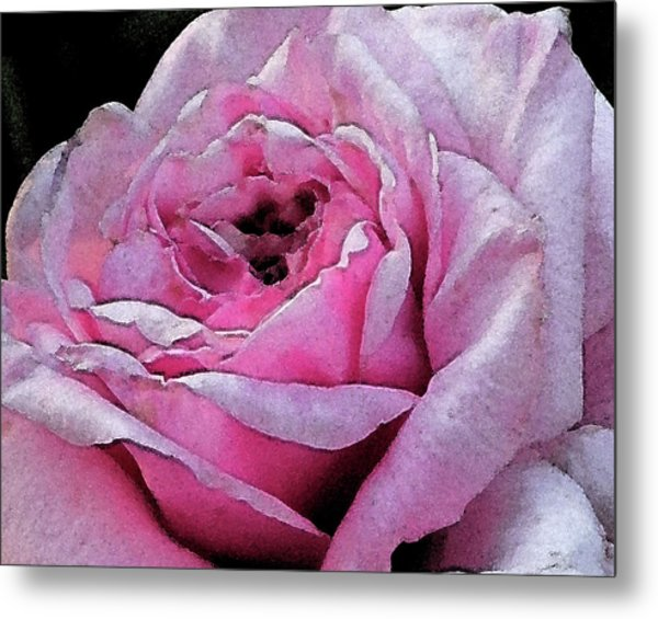 Rose Metal Print by Michele Caporaso
