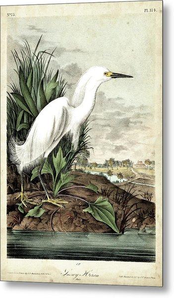 Snowy Heron Metal Print