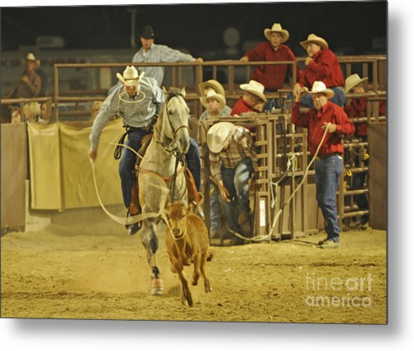 Steer Wrestling Metal Print by Dennis Hammer