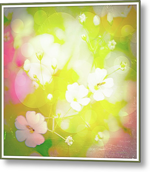 Summer Flowers, Baby's Breath, Digital Art Metal Print