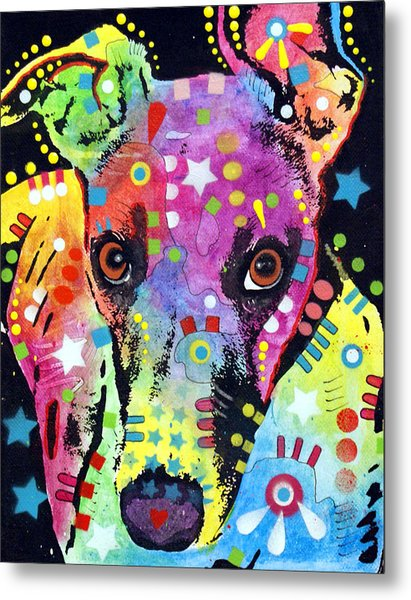 Whippet Metal Print